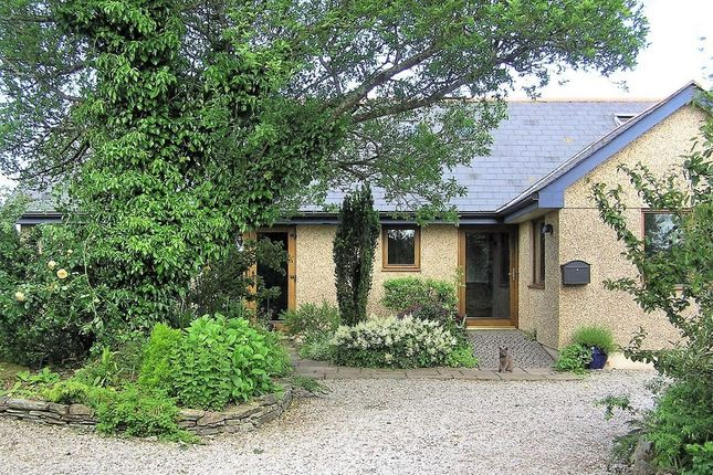 Thumbnail Detached bungalow for sale in Goonbell, St. Agnes, Cornwall