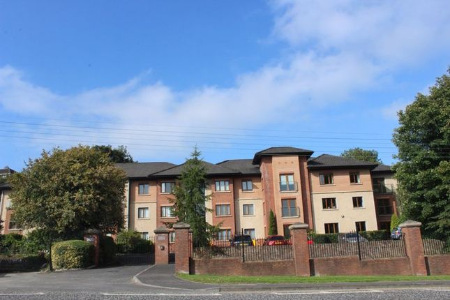 Thumbnail Flat for sale in San Jose, Cloughoge, Newry