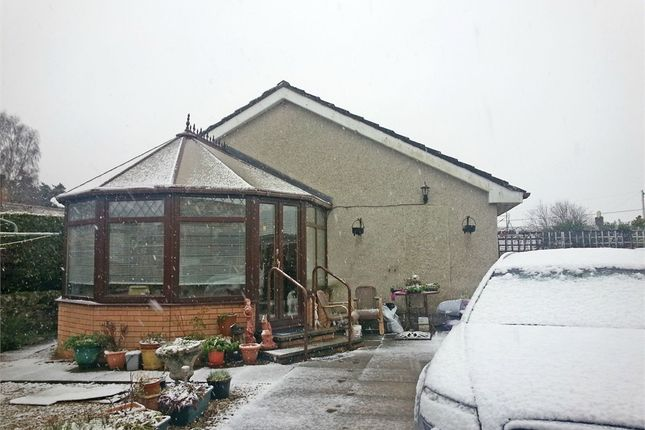 Thumbnail Detached bungalow for sale in Dundee Road, Letham, Forfar, Angus