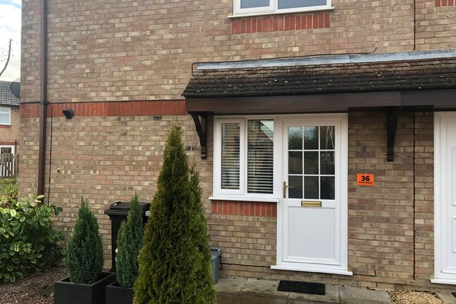 Thumbnail Semi-detached house to rent in The Brambles, Deeping St. James, Peterborough
