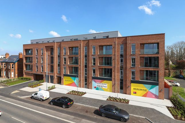 Thumbnail Retail premises to let in Units 1-4, 332-338B Ormeau Road, Belfast, County Antrim