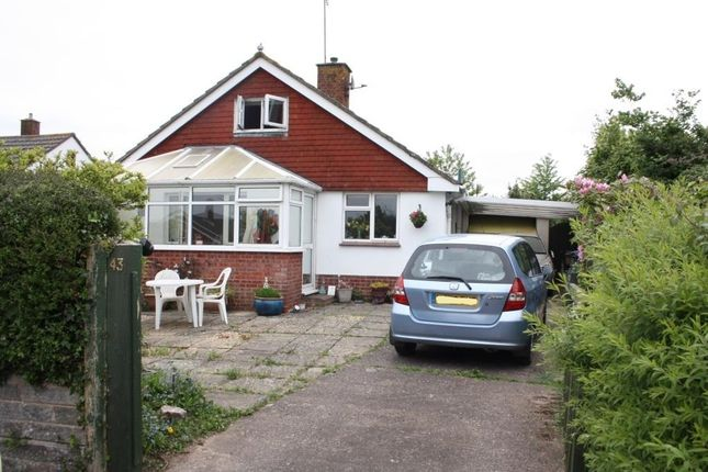 4 bed detached bungalow for sale in Oak Close, Ottery St. Mary