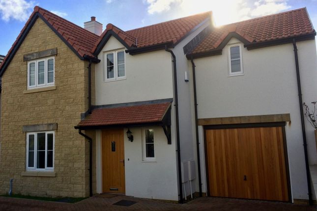 Thumbnail Detached house for sale in Quab Lane, Wedmore