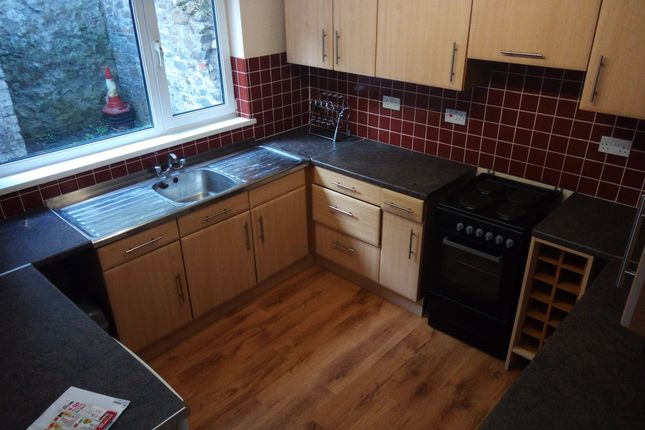 Thumbnail Property to rent in Westbury Street, Brynmill, Swansea