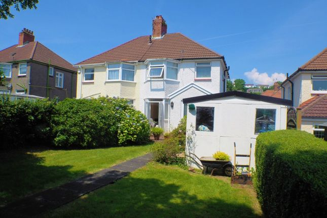 Thumbnail Semi-detached house to rent in Harlech Crescent, Sketty, Swansea