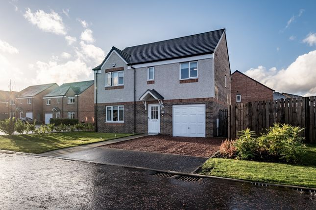 Thumbnail Detached house for sale in 11 Range Drive, Darnley, Glasgow