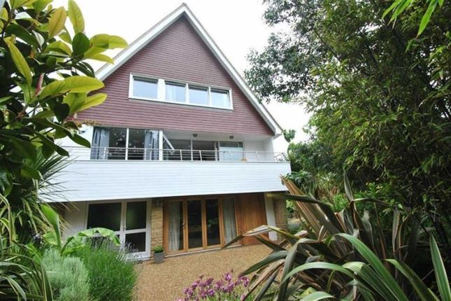 Thumbnail Detached house for sale in Maple Walk, Cooden, East Sussex