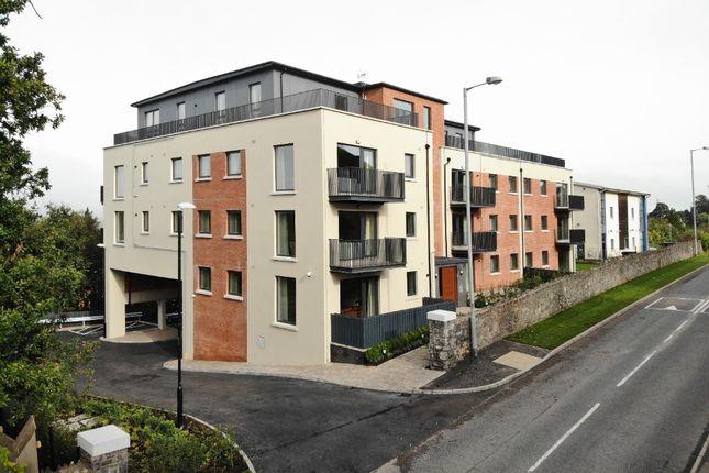 2 bed flat to rent in Newtownbreda Road, Belfast BT8