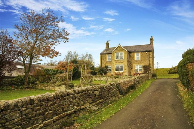 Thumbnail Detached house for sale in Heugh House Lane, Hexham, Northumberland