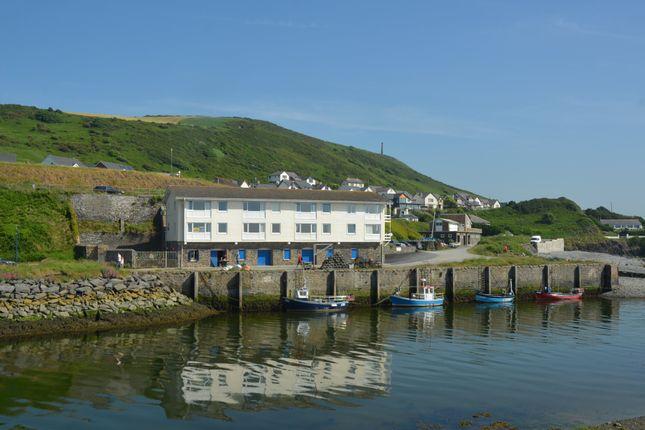 Thumbnail Flat for sale in St Davids Quay, Trefechan, Aberystwyth