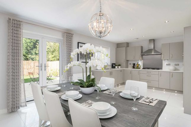 Thumbnail Terraced house for sale in Adolphus Road, Finsbury Park, London
