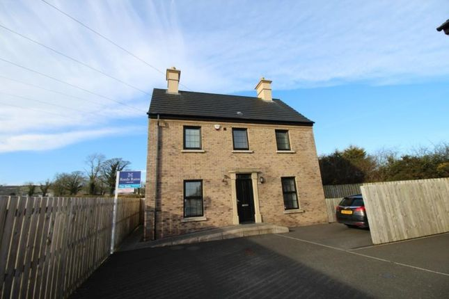 Thumbnail Detached house to rent in Lady Wallace Crescent, Lisburn