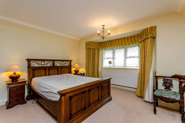 Thumbnail Detached house to rent in The Gallop, Sutton