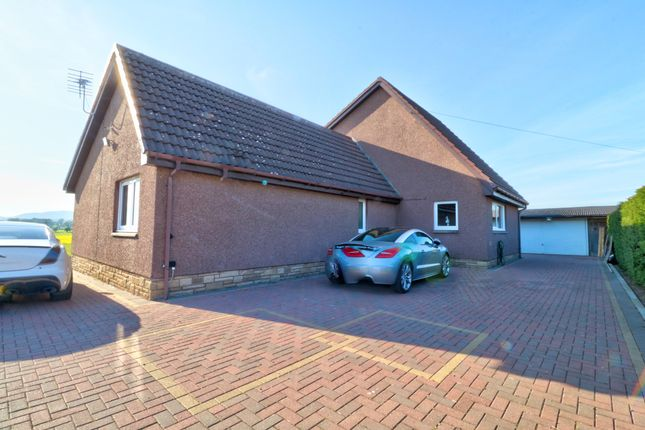 Rear Of Property of Dalziel Road, Inveraldie, Tealing, Dundee DD4
