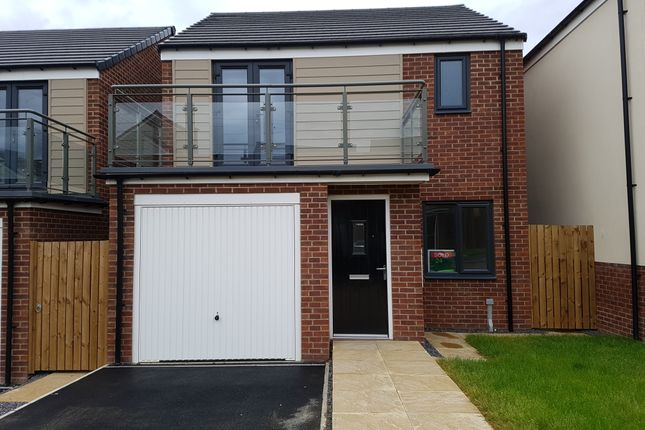 Thumbnail Detached house to rent in Osprey Walk, Newcastle Great Park