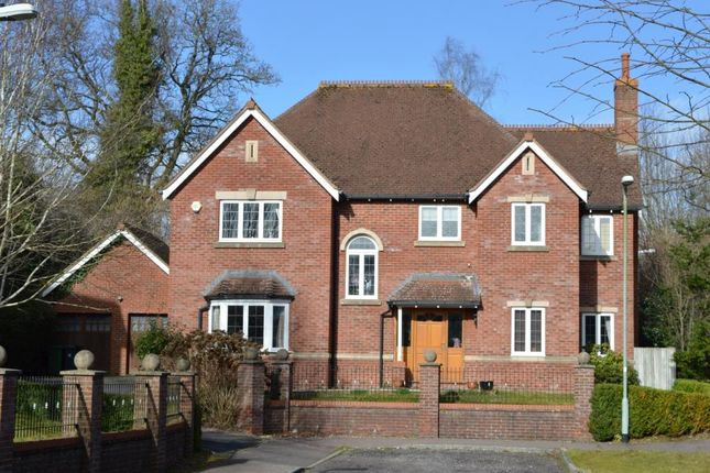 Thumbnail Detached house for sale in Heather Grange, West Hill, Ottery St. Mary, Devon