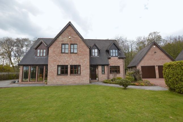 Thumbnail Detached house for sale in Chesterwell, Swarland, Morpeth