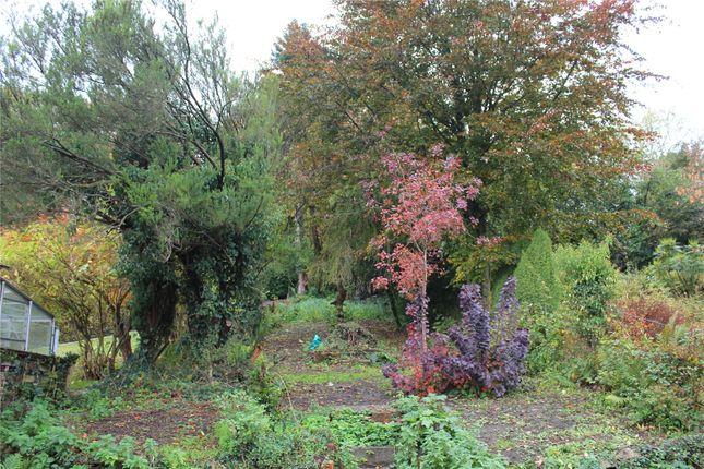 Picture No. 14 of Petworth Road, Witley, Godalming, Surrey GU8