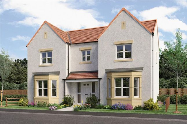 "Thumbnail Detached house for sale in ""Thames Det"" at Kingsfield Drive, Newtongrange, Dalkeith"
