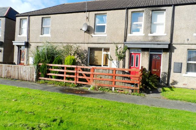 Thumbnail Terraced house for sale in The Drive, Washington
