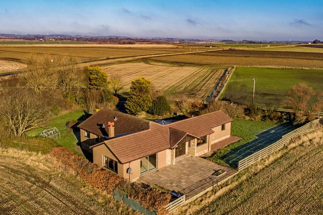 Thumbnail Detached bungalow for sale in Shepherds Well, Pathhead, St. Monans, Anstruther