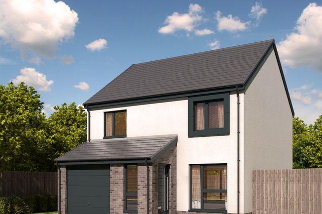 Thumbnail Detached house for sale in The Finlayson - Plot 37, Devongrange, Sauchie, Alloa, Clackmannanshire