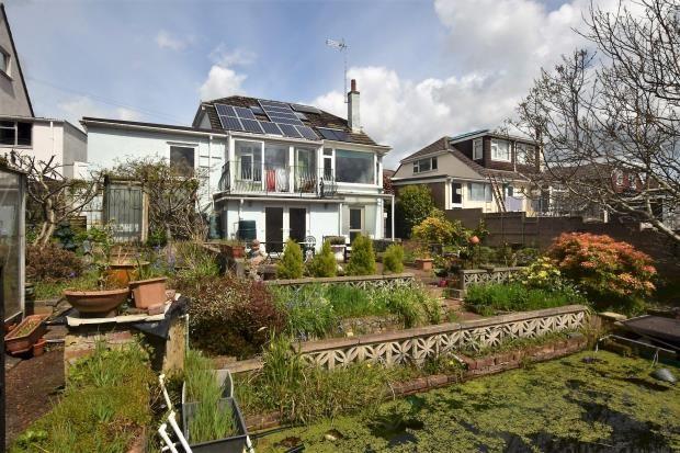 Thumbnail Detached bungalow for sale in Alison Road, Paignton, Devon