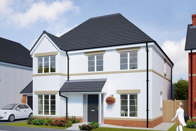 """Thumbnail Detached house for sale in """"The Tetbury"""" at Browney Lane, Browney, Durham"""