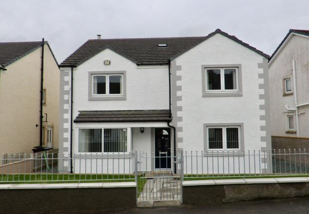 Thumbnail Detached house for sale in Beech Grove, Low Seaton, Seaton