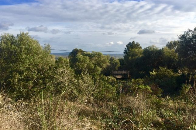 Land for sale in Spain, Mallorca, Palma De Mallorca, Puntiró