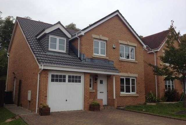 Thumbnail Detached house to rent in John Neilson Avenue, Paisley
