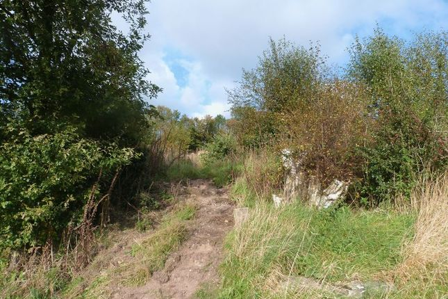 Photo 6 of Land Off Halls Road, Mow Cop ST7