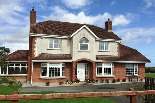 Thumbnail Detached house for sale in Willowbrook, Galroostown, Termonfeckin, Louth