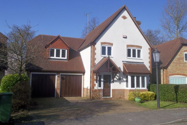 Thumbnail Detached house to rent in Phoebes Orchard, Stoke Hammond