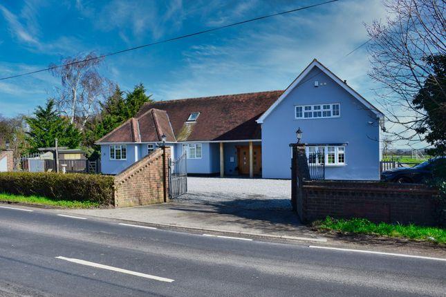 Thumbnail Detached house for sale in Fambridge Road, Mundon, Maldon