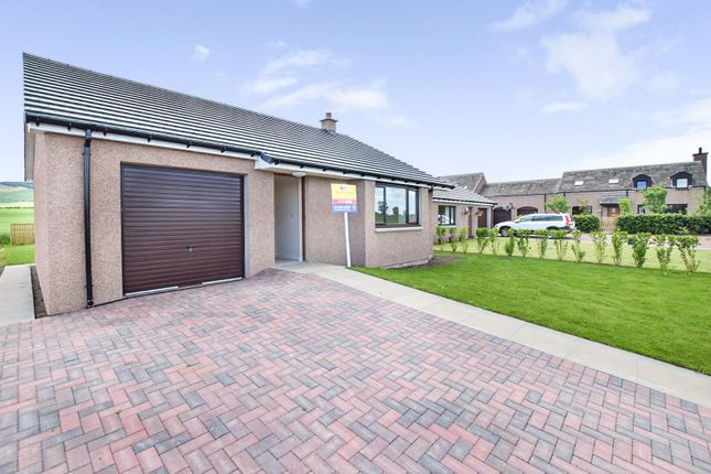 Thumbnail Detached bungalow for sale in Boreland Mill, Coupar Angus, Blairgowrie