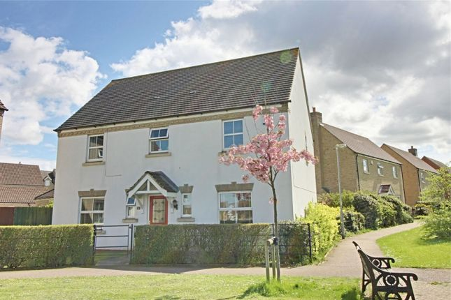 Thumbnail Detached house for sale in The Glades, Huntingdon