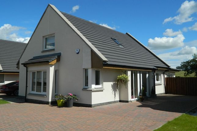Thumbnail Detached house for sale in Goremire Road, Carluke