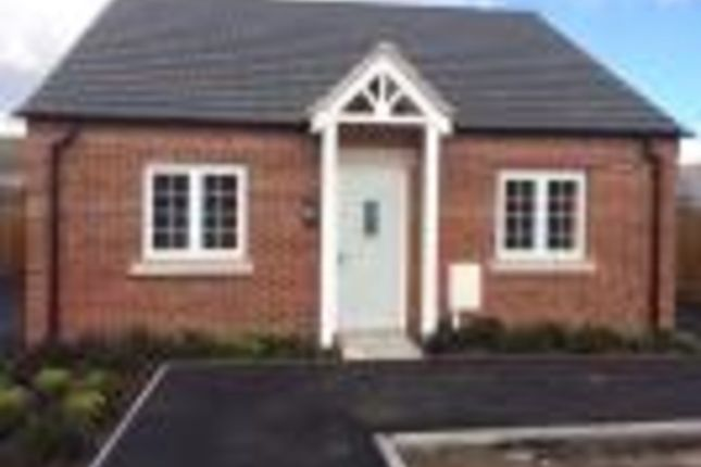 Thumbnail Detached bungalow to rent in Tom Stimpson Way, Sutton-In-Ashfield