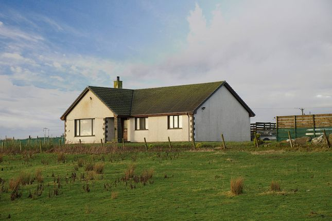 Thumbnail Bungalow for sale in Occumster, Lybster, Caithness, Highland