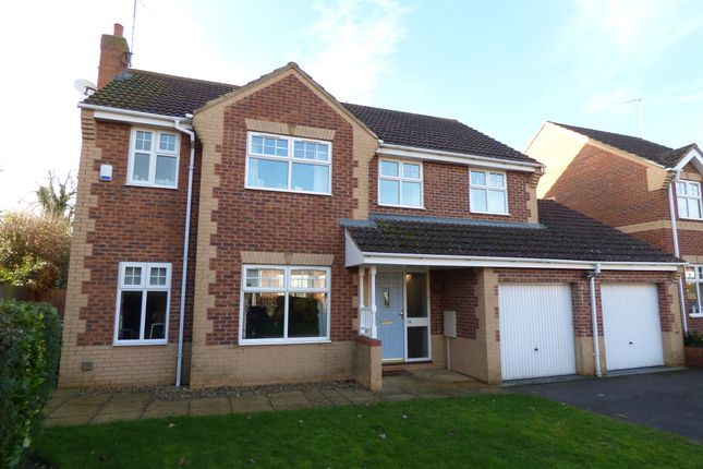 Thumbnail Detached house for sale in Creed Road, Oundle, Peterborough