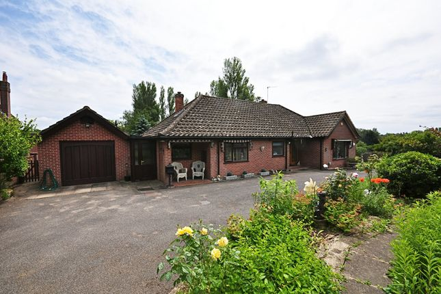 Thumbnail Detached bungalow for sale in Rosemary Cottages, Flordon Road, Newton Flotman, Norwich