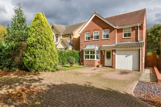 Thumbnail Detached house for sale in Gresley Close, Colchester, Essex