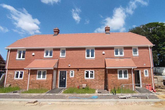 3 bed semi-detached house for sale in Salisbury Road, Downton, Salisbury SP5