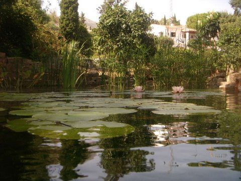 House And Pond of Spain, Málaga, Mijas