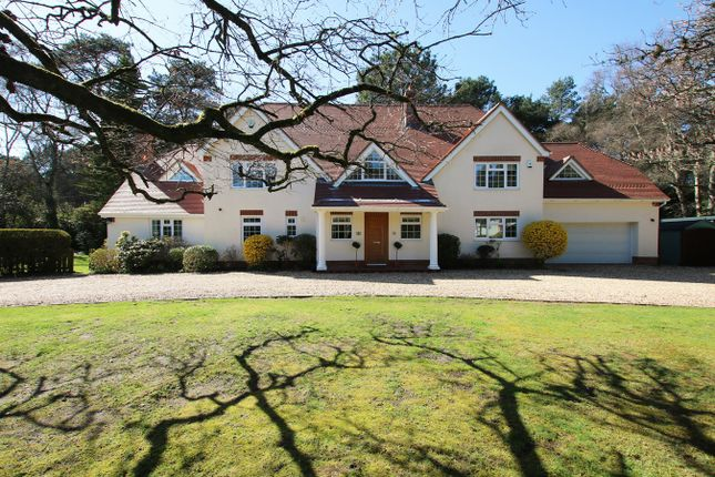 Thumbnail Detached house for sale in Davids Lane, Ringwood