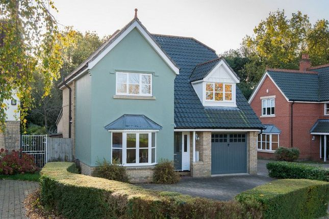 Thumbnail Detached house for sale in Stan Petersen Close, Thorpe Hamlet, Norwich