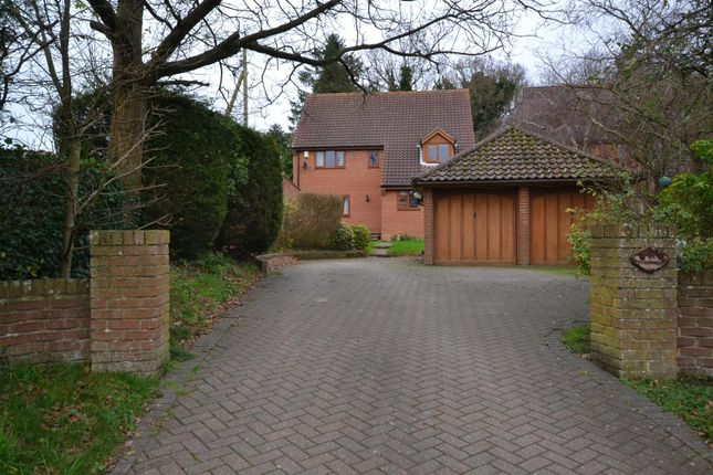 Thumbnail Detached house for sale in Flordon, Norwich