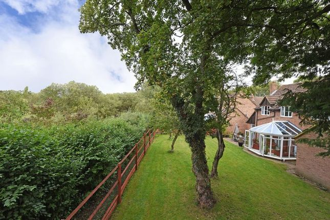 Thumbnail Detached house for sale in Hardys Field, Kingsclere, Newbury
