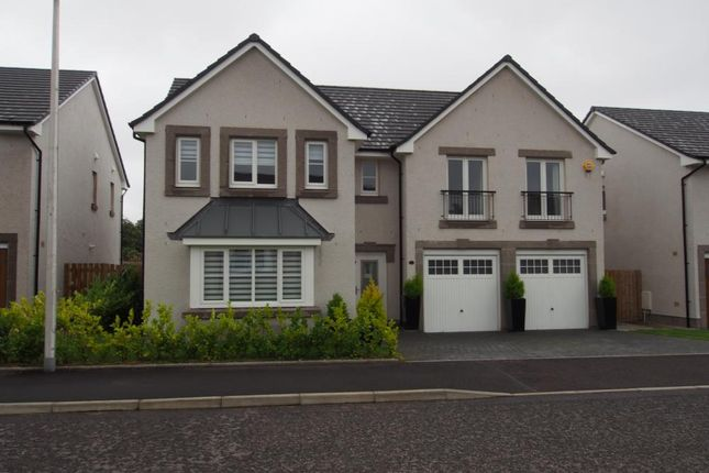 Thumbnail Detached house to rent in Berryhill Circle, Westhill